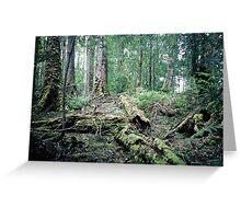 Circle of Life, Tarkine Rainforest, Tasmania Greeting Card