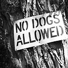 No Dogs Allowed by aLiLee