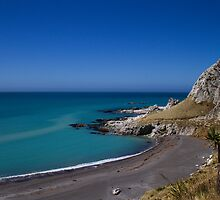 The Needles by Robyn Carter