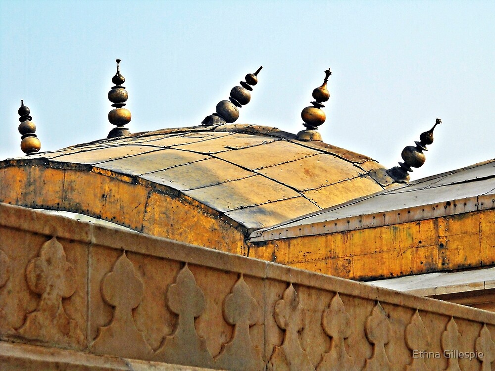 Agra Fort Roof  by Ethna Gillespie