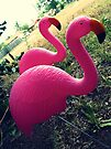04-26-11:  I Have Flamingos!!!! by Margaret Bryant