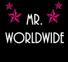 MR.WORLDWIDE by HaileyS