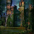 Ashford castle by andy551