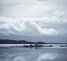 Grey Morning on the Inlet by pennyswork