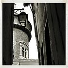 Donjon in a narrow view by Franlaval