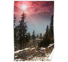 Ascent on Schöckl: glorious sun Poster