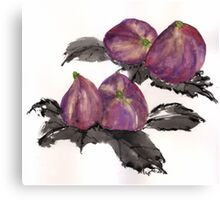 Pairs of Figs  Canvas Print