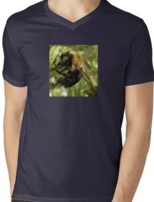 Bee Close Up Mens V-Neck T-Shirt