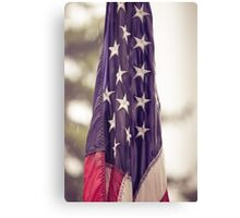 USA I Canvas Print