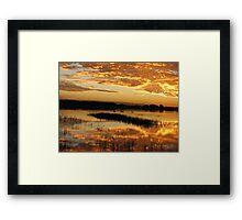 Swans on Sunset Framed Print