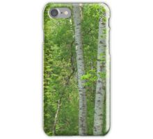 In the Aspen Forest iPhone Case/Skin