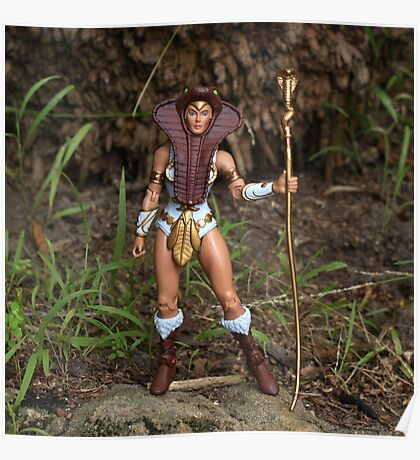 Masters of the Universe Classics - Goddess/Teela Poster