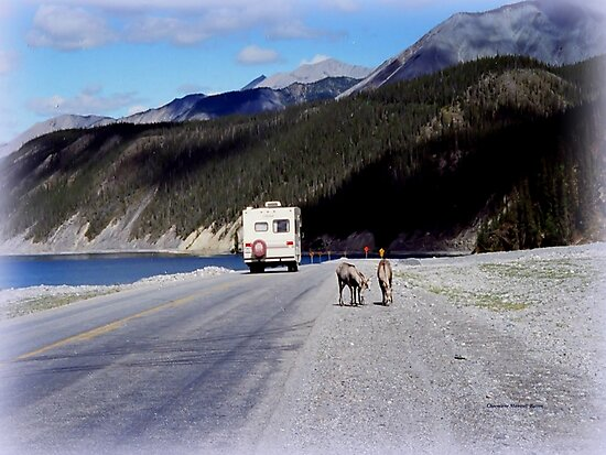 Alaska Canadian Highway by Charmiene Maxwell-Batten