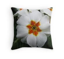 A white beauty Throw Pillow