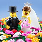 The Happy Couple by Addison