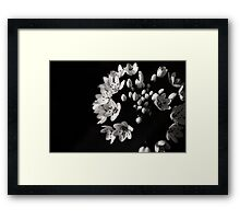Begin Again Framed Print