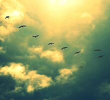 Fly Away With Me by stephanielim