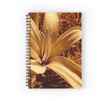 Conventional Spiral Notebook