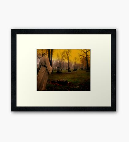 A cemetery in Michigan Framed Print