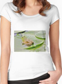 Bullfrog on a lily pad... Women's Fitted Scoop T-Shirt