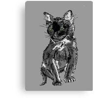 Saphira the cat Pixel sketch Canvas Print