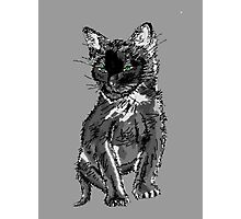 Saphira the cat Pixel sketch Photographic Print