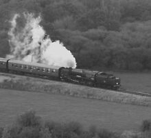 Swanage Steam Train Railway by MichelleRees