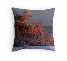Sea View Throw Pillow