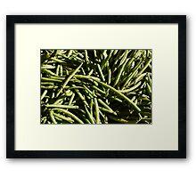 Food - green beans Framed Print