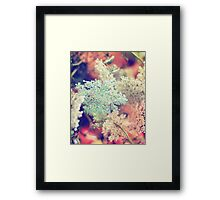 Dyed Lace Framed Print