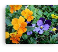 Garden of Colors Canvas Print