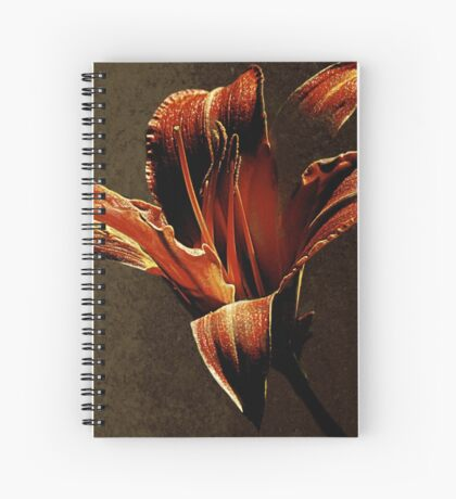 Evening Twinkle Twinkling Spiral Notebook