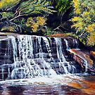 Cascades, Blue Mountains by Linda Callaghan