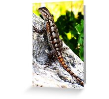 Patient Lizard Greeting Card