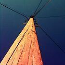Telegraph Pole by Richard Pitman