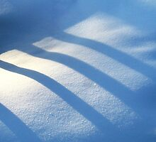 Shadows on the Snow by Ritva Ikonen