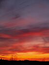 MARCH SUNSET by BCallahan