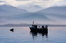 Misty Isle... Isle of Skye, Scotland. by photosecosse /barbara jones