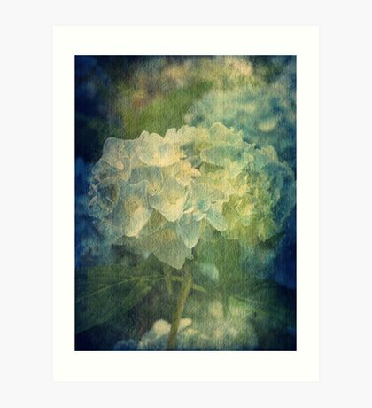 Summer Beauty Art Print