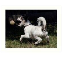 Hover Dog Art Print