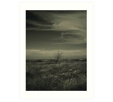 A Tree, Some Clouds, A View Art Print