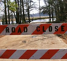 Road Closed in East Texas by Susan Russell