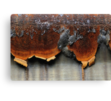 Lava Run Canvas Print