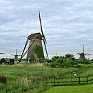 The Windmills of Kinderdijk, Holland by Lanis Rossi