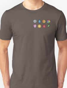 The Kanto Gym Badges T-Shirt