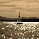 Summer Sailing by bicyclegirl