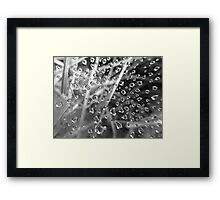 MINIATURE REFLECTIONS Framed Print