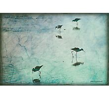 Stilts in Blue Photographic Print