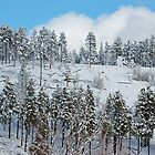 Blue Danube on the Powder by CowGirlZenPhoto