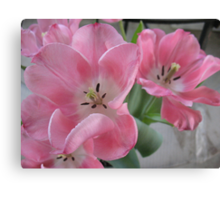 The Dream Dance of Ballet Tulips Canvas Print
